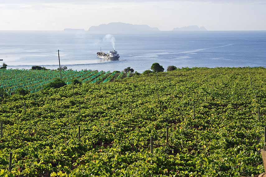 Historically Madeiran wine was heated up in the ship's hold on its long sea journey to the colonies and found to have been improved by the process!