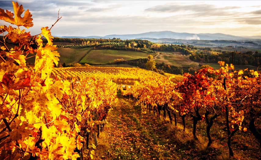 'Stunning autumn scenery in Italy'