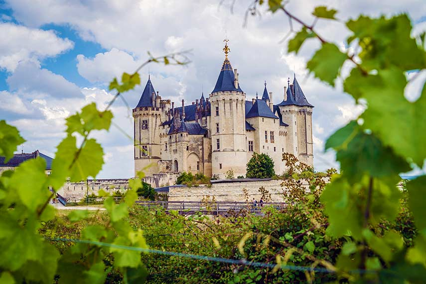 The beautiful Loire valley promises wines with individuality and flair in 2020