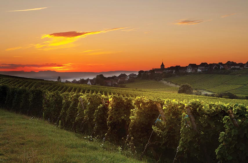 A welcome sight! The sun going down over this beautiful wine region