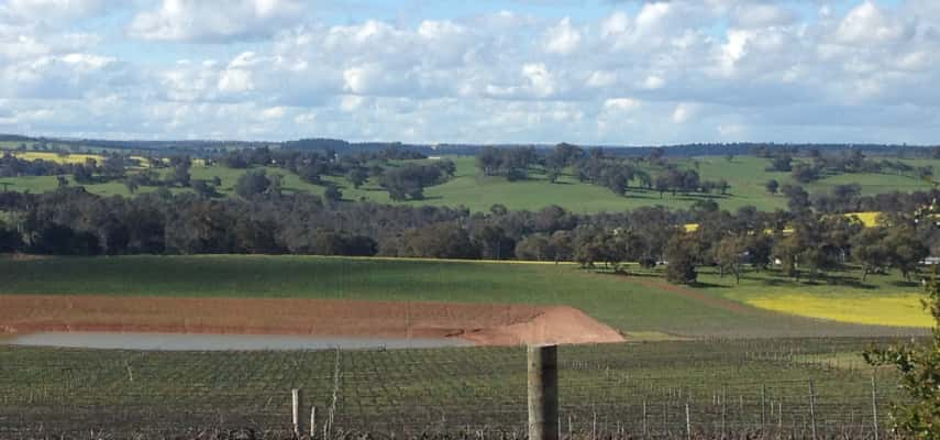 Frankland Vineyards