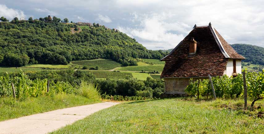 A house overlooking vineyards in the Jura