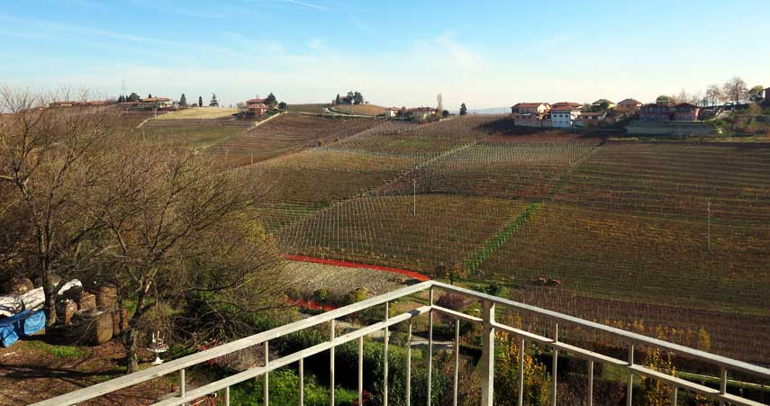 The view from Produttori del Barbaresco's tasting room