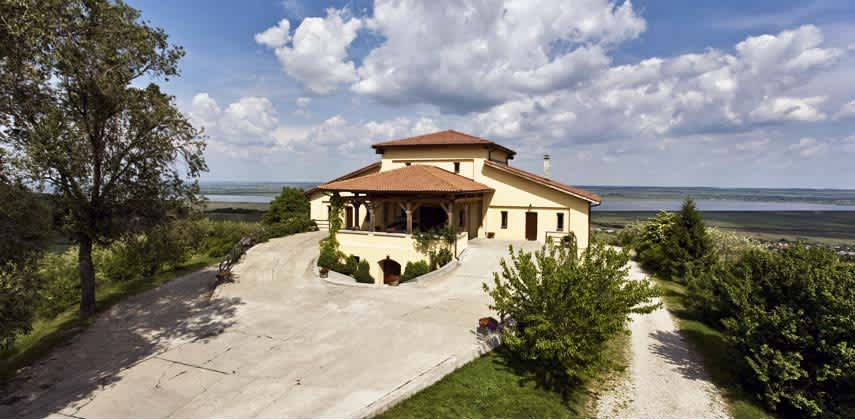 In 2001, 20 hectares of vineyard and the winery´s buildings were handed over to Ileana