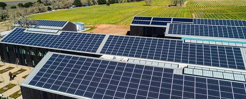 Silver Oak's 2595 rooftop solar panels generate over one megawatt of electricity a year