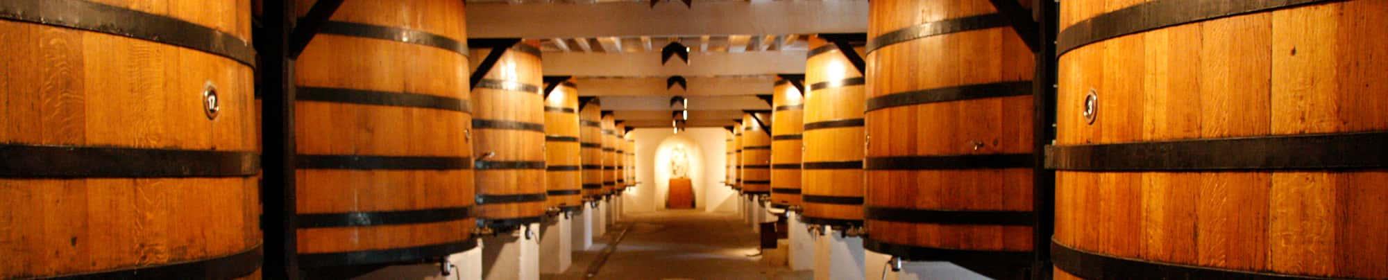 Winemaking: From Vineyard to Bottle