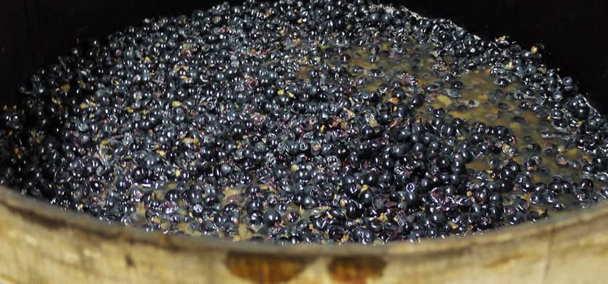 Fermenting in a barrel