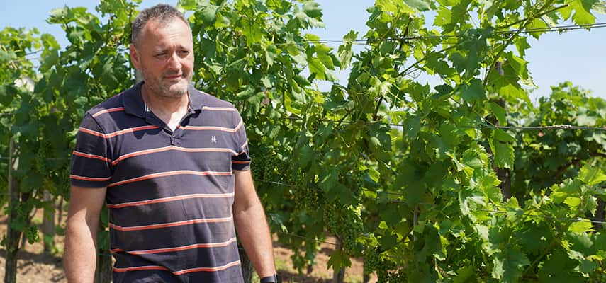 Károly Kolonics, owner and winemaker of Kolonics winery