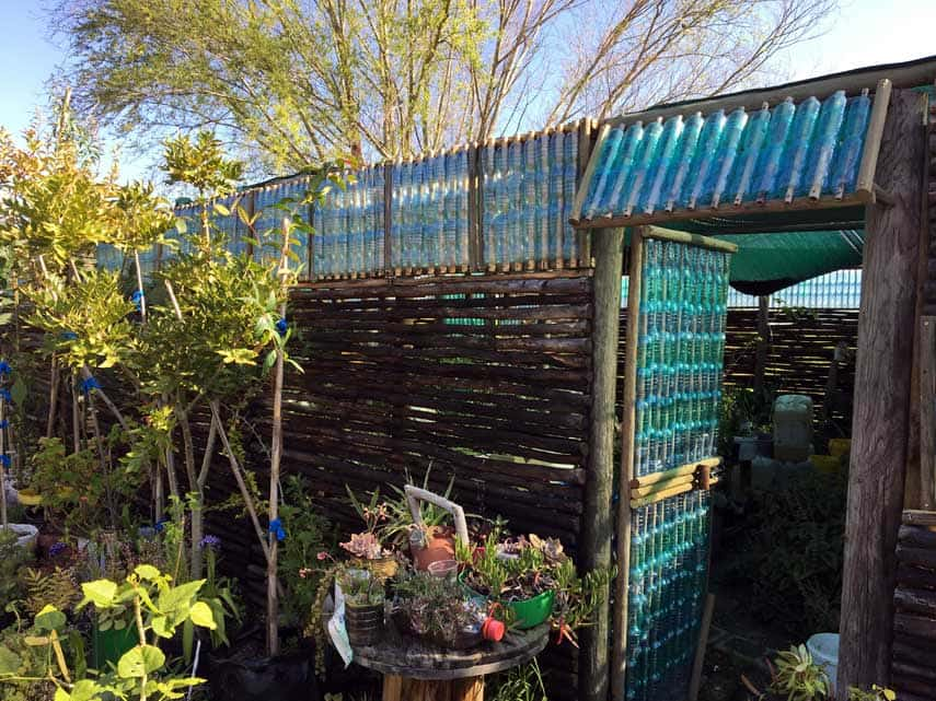 Innovative greenhouse made from recycled plastic bottles at Spier
