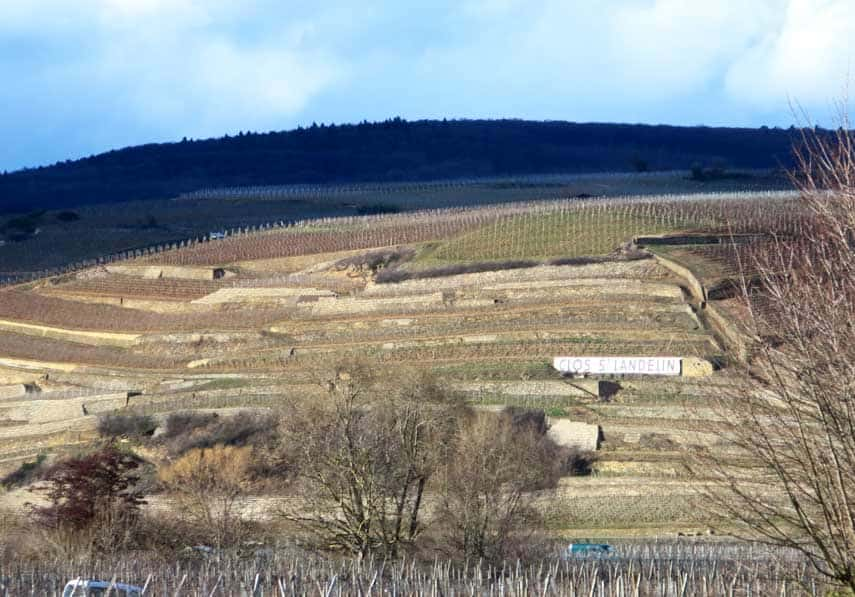 View of the Clos St Landelin from the Muré tasting room