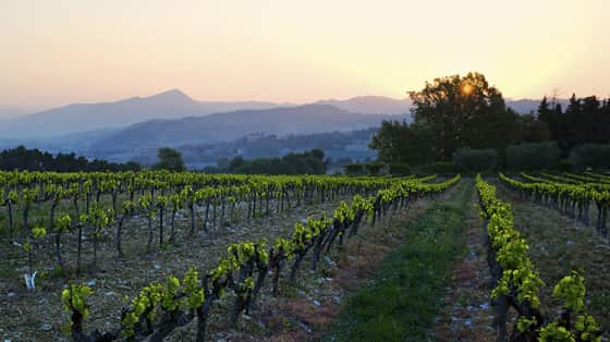 Rhône 2017: The Drought Factor