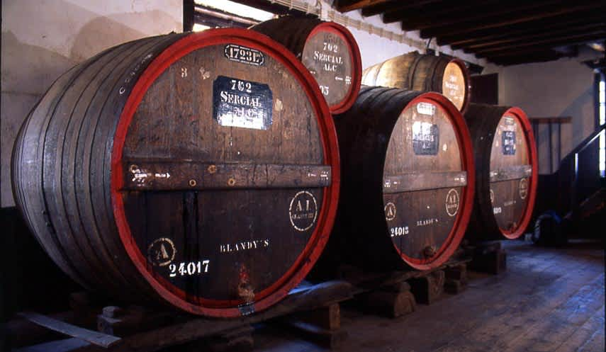 Casks of Madeira at Blandy's