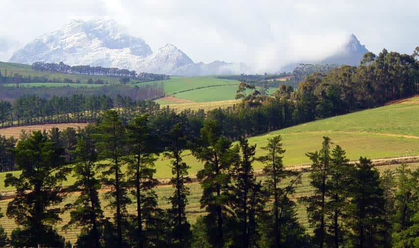 View of the Simonsberg mountain, the nearby vineyards produce some of the most highly saught red wines in South Africa