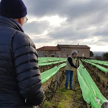 Tim being shown the hail netting being used by some of the region's growers