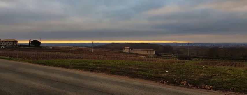 Gold on the horizon! Sunrise in Morgon, one of the ten Beaujolais 'crus'