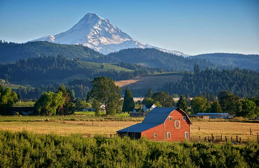 Oregon, with its beautiful mountainscapes and dense woodland, has a unique terroir