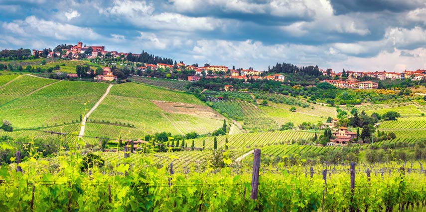 Panzano in the heart of Chianti Classico with its golden shell (Conca d'Oro) of sun-soaked vines, is home to the Fontodi estate, widely regarded as one of the best in the region