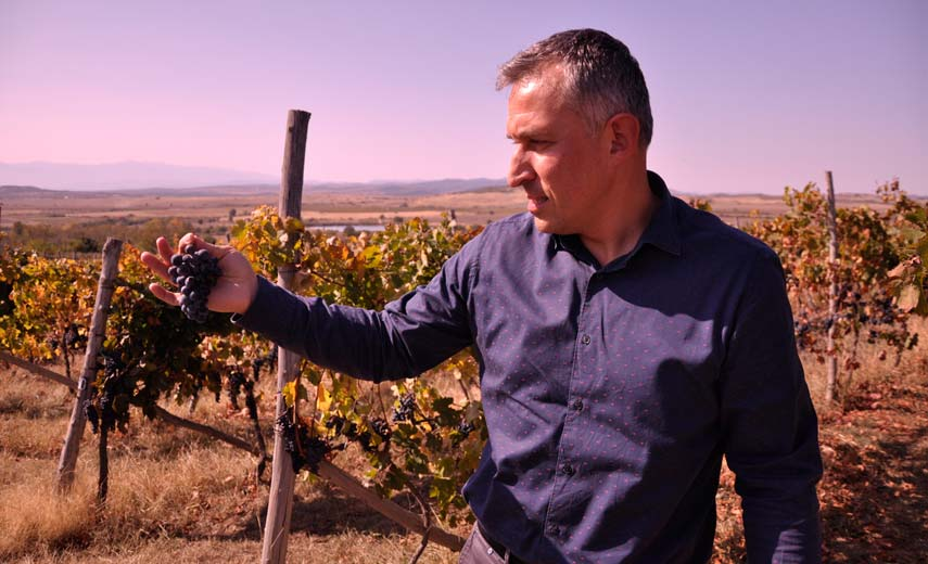 Mitko Nikolov, owner of a successful Bulgarian wine business Apollowine, knows pretty much everything and everyone there is to know in the Bulgarian wine scene