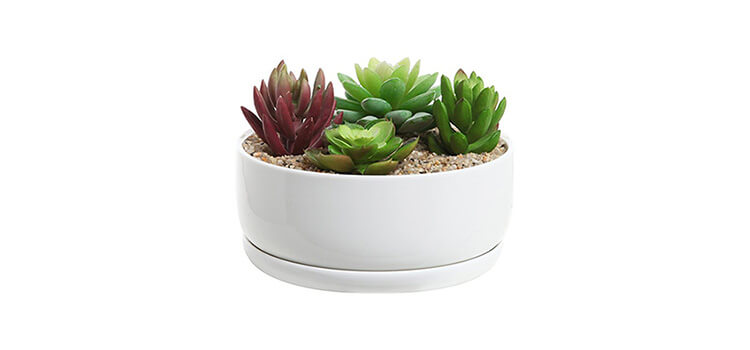 6 inch White Ceramic Round Succulent Planter Bowl