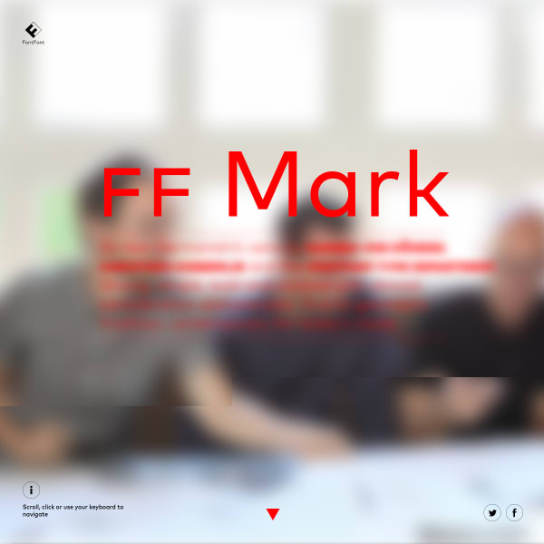 screenshot of FF Mark