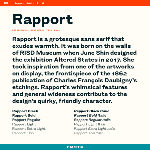 screenshot of Rapport