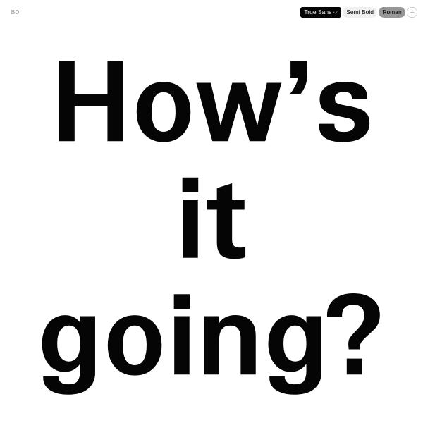 screenshot of True Sans