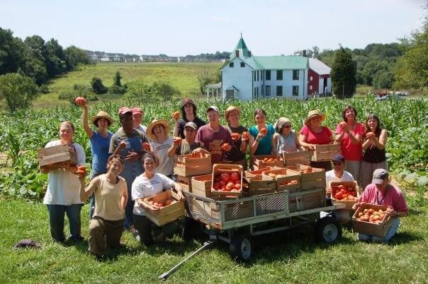 Közösségi Mezőgazdálkodás - TZM MAGYARORSZÁG