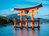 Hiroshima Chartered Flight 30 Dec from JTB