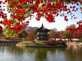 7 Days Sale: Fly to Seoul from SGD620 with Cathay Pacific from ZUJI