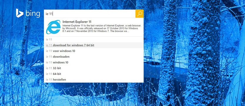 Internet Explorer 8, 9 en 10