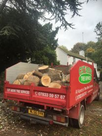 Cut Above Tree Services
