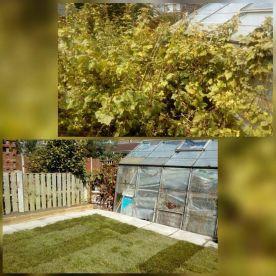 First Call Garden Maintenance