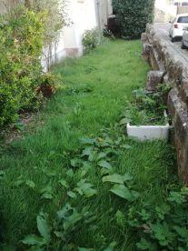 A Garden For You