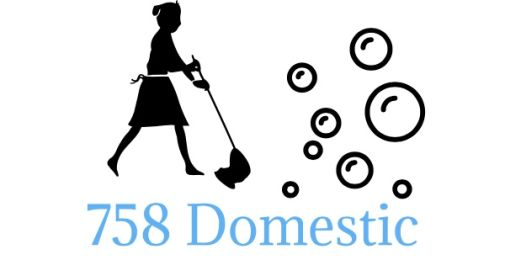 758 Domestic Cleaning & Ironing