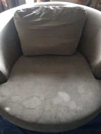 BNT Carpet & Upholstery Cleaning