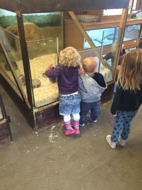 Children In Mind Childminding Services