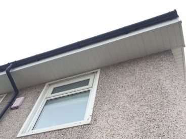 Clean Shadow Window Cleaning Service