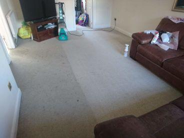 Carpet Guru