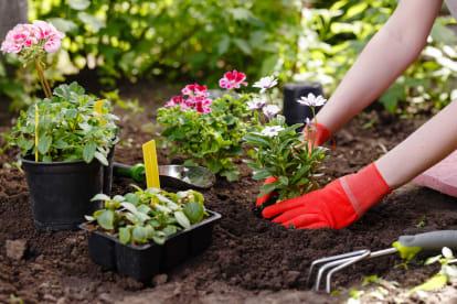 A3 Gardeners R Us