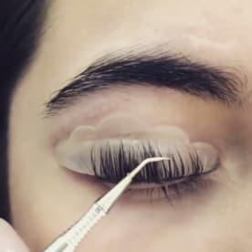 Eyelash & Eyebrow Technician