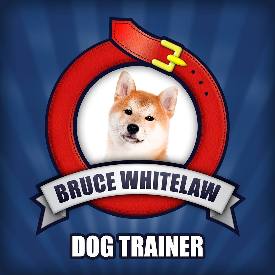 Bruce Whitelaw - Dog Trainer