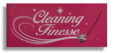 Cleaning Finesse