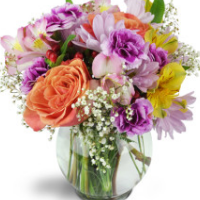 Thoughtful Gifts & Flowers - Real Local Florist