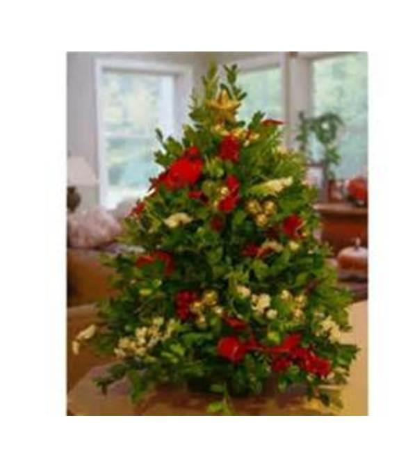 Oregon boxwood tree decorated