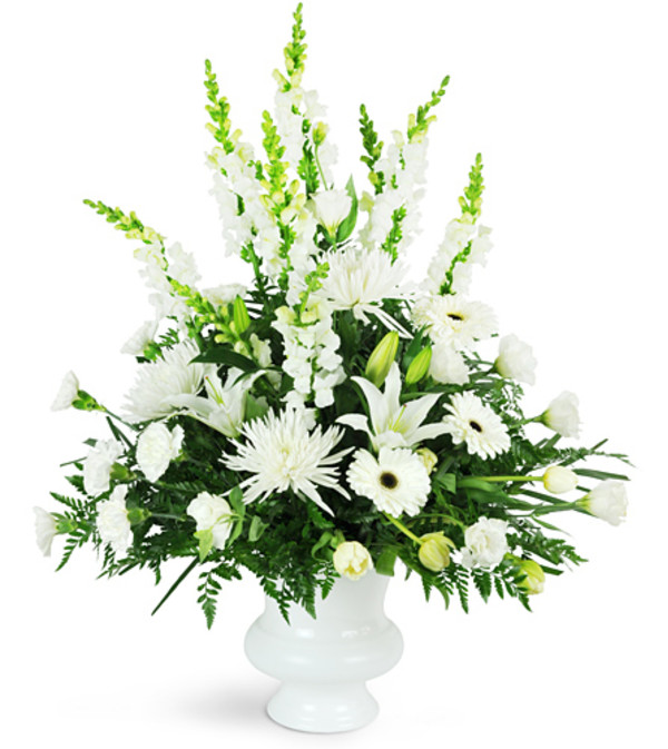 Peaceful White Tribute