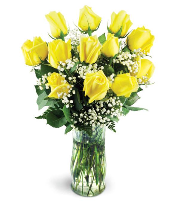 Classic Yellow Roses