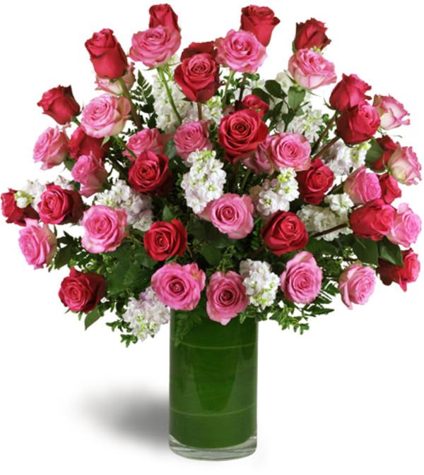 Opulent Roses™