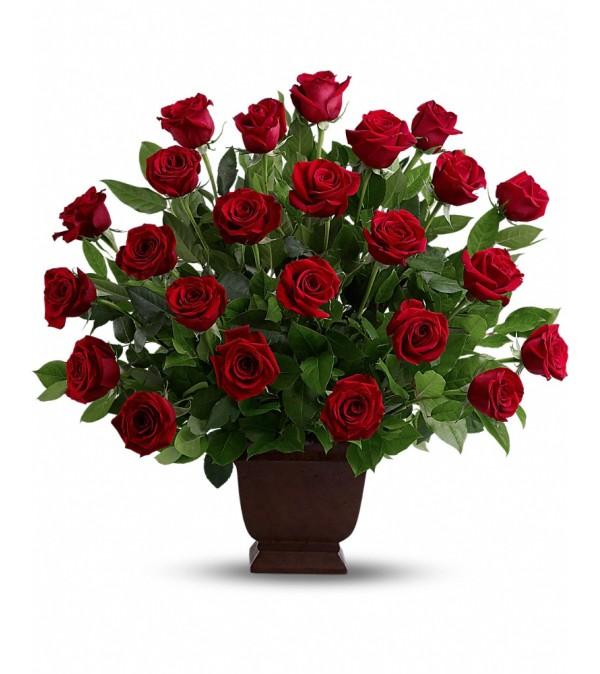 Rose Tribute