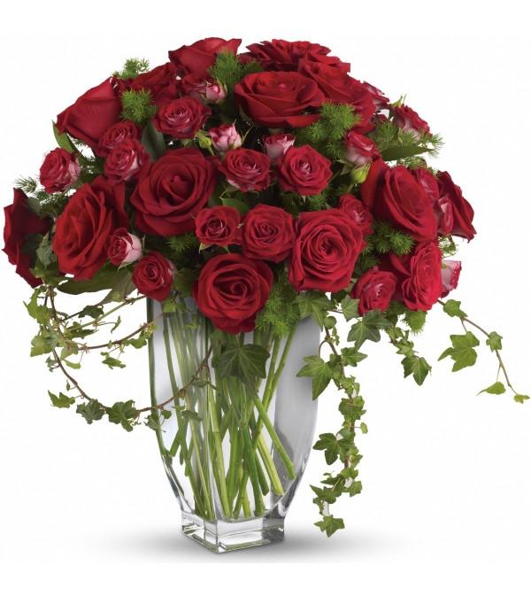 Regal English Roses
