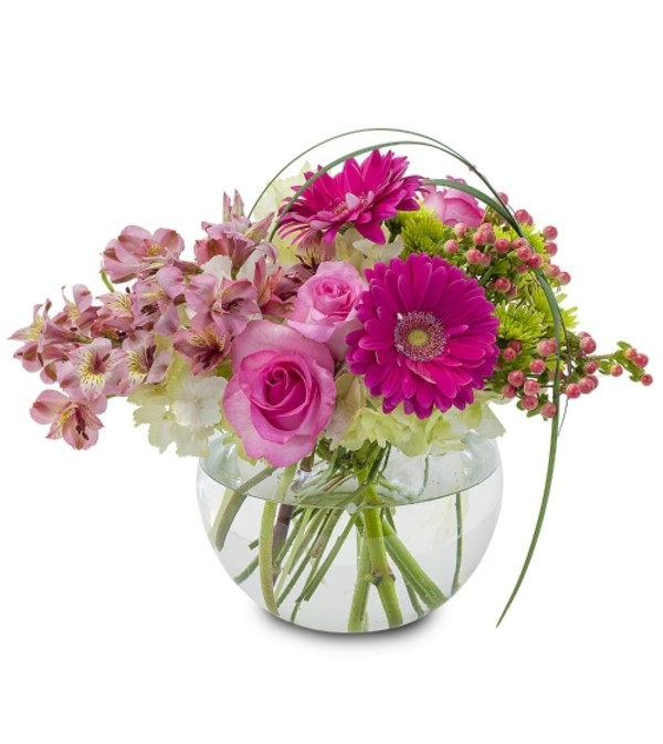 Grace Arrangement